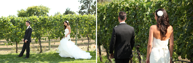 Bonitas_winery_wedding_0001