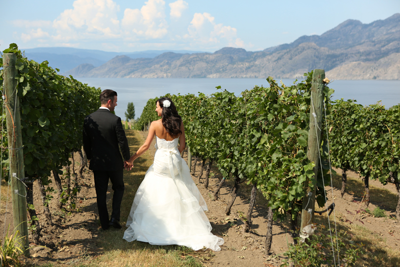 Bonitas_winery_wedding_0004