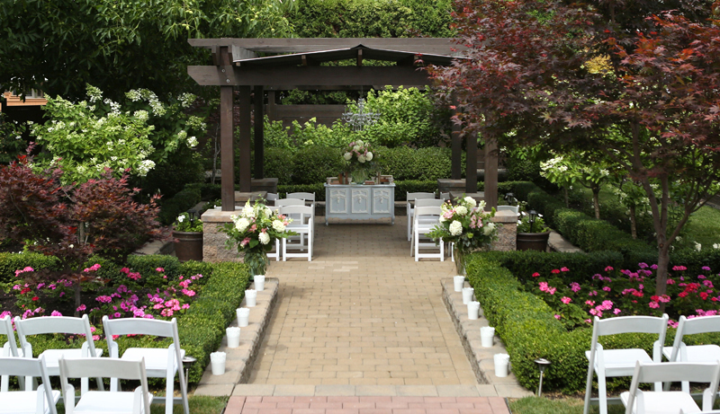 Canadian_backyard-wedding_0002